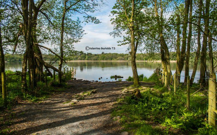Irlanda del Nord: natura selvaggia e l'incanto di Derry.